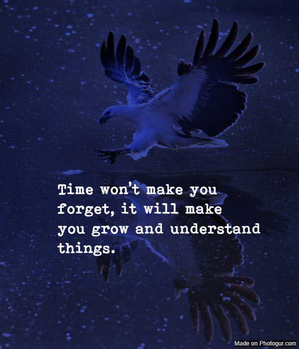 Time won't make you forget, it will make you grow and understand things.