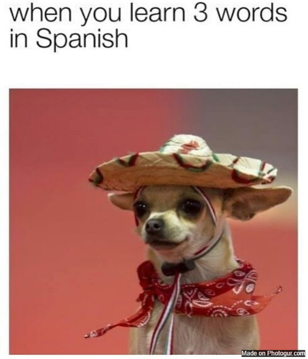 When you learn 3 words in spanish