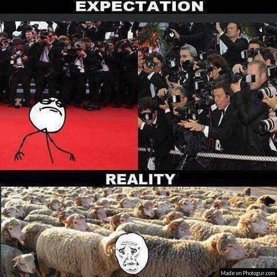 Expectation Vs Reality memes
