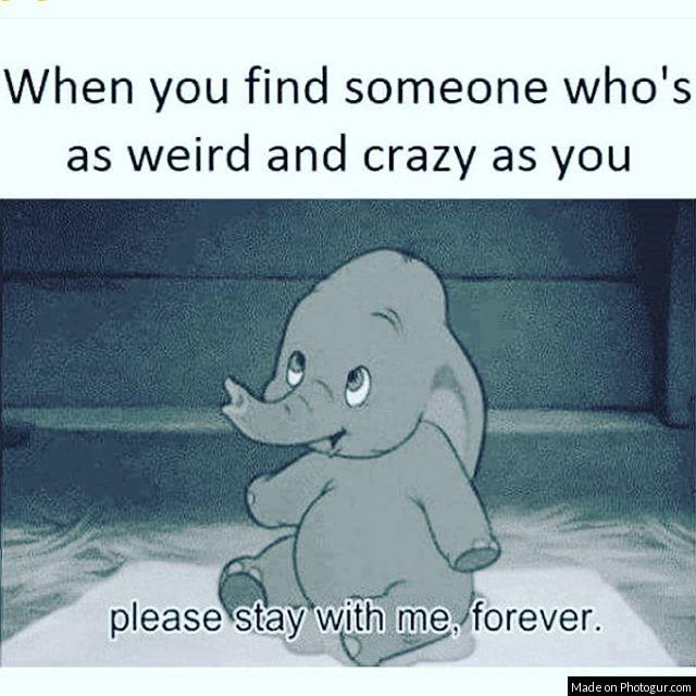 When you find someone who's as weird and crazy as you